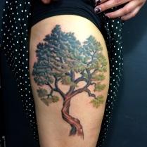 Tree finished